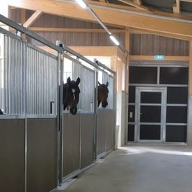 poney club de presinge - training courses