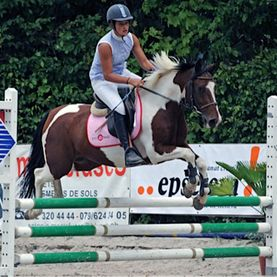 poney club de presinge - ponies